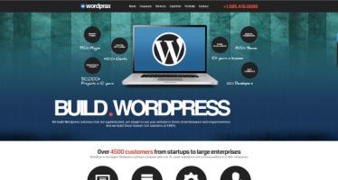 A Sneak Into Rapid and Overwhelming WordPress Development