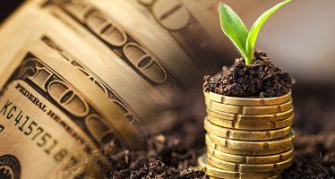 Alternative Financing for Wholesale Produce Distributors