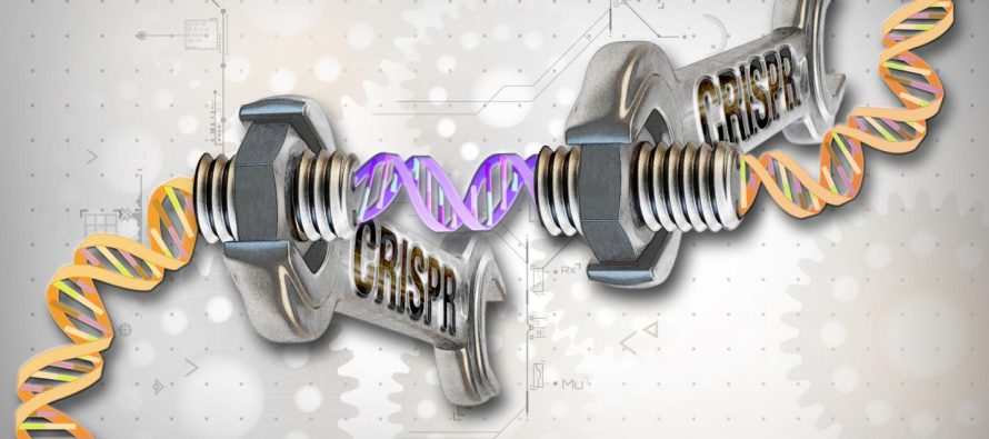 Can Crispr-Cas9 Boost Intelligence?