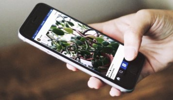 Instagram recommendations from 7 execs with lots of fans