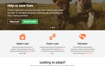 GoDaddy Experts Rescue WordPress Websites