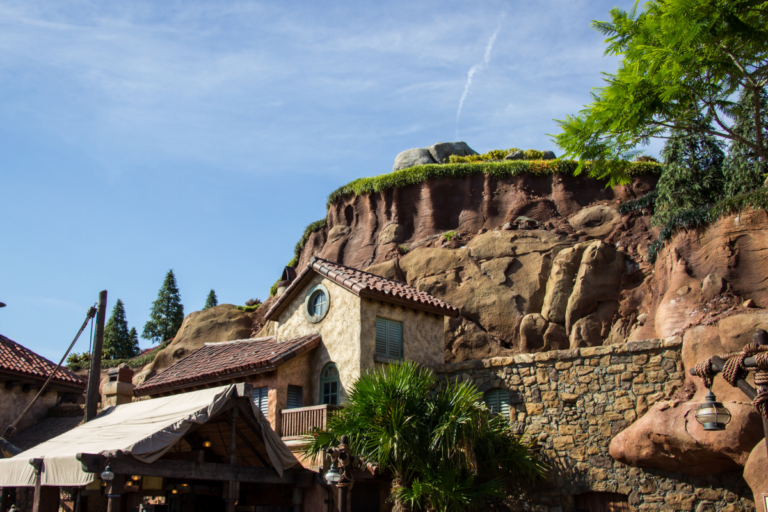 Disney forged members share their nine nice recommendations for buying the maximum from your visit
