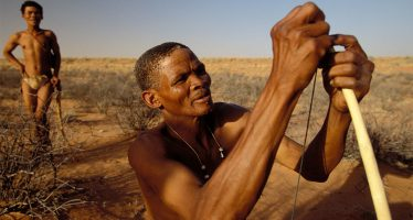Farmers, tourists, and cattle threaten to wipe out some of the world's last hunter-gatherers