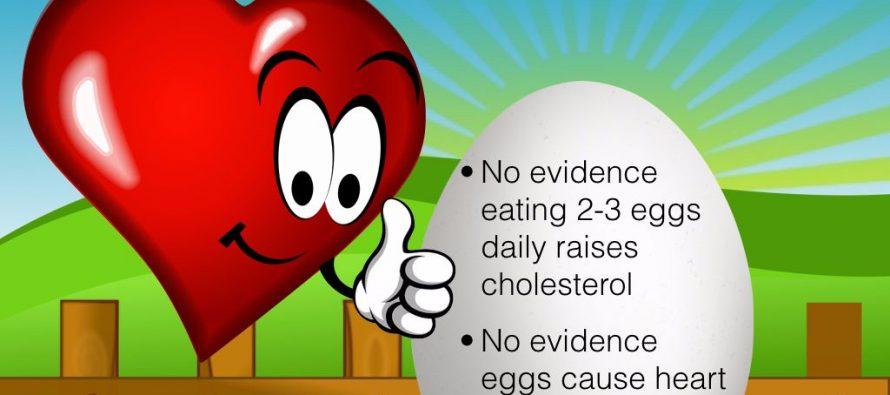 Eggs Not Harmful for Heart Health