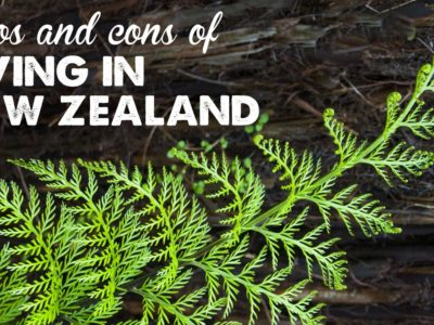 Emigrating from the UK: The perks and pitfalls of lifestyles in NZ