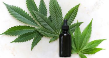 The Power of CBD in Beauty Products